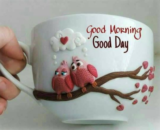 Good Morning Good Day Images Picture