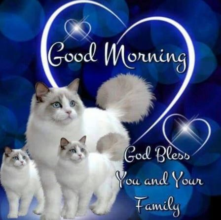 Good Morning Images for Friends and Family Image