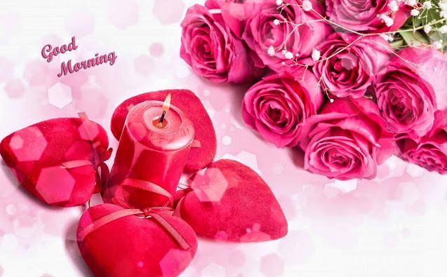 Good Morning Flowers Pictures for Lover