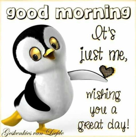 Good Morning Wishing you a Great Day Image