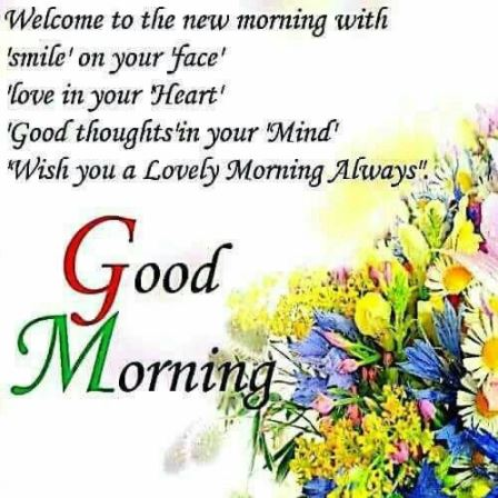 Happy Good Morning Wish you a lovely morning always Image