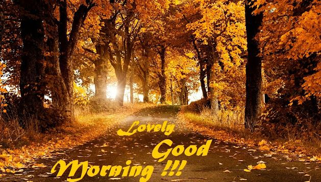 Lovely Good Morning Picture