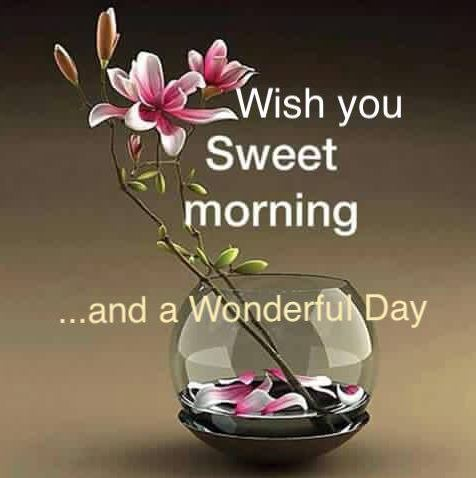 Wish you Sweet Morning and a Wonderful Day Image Pic