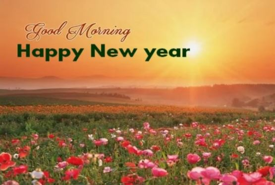 Good Morning Happy New Year Flowers Sun Image