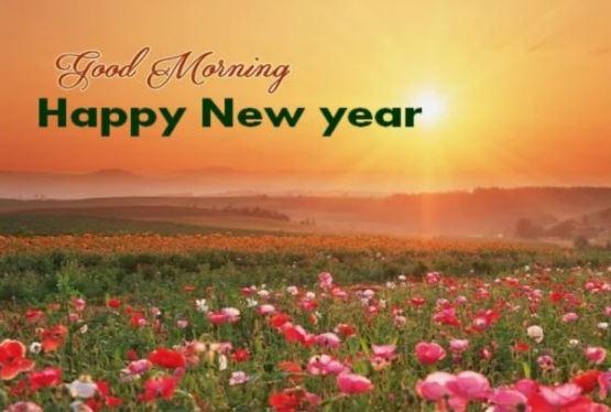 Good Morning Happy New Year Flowers Sun Image