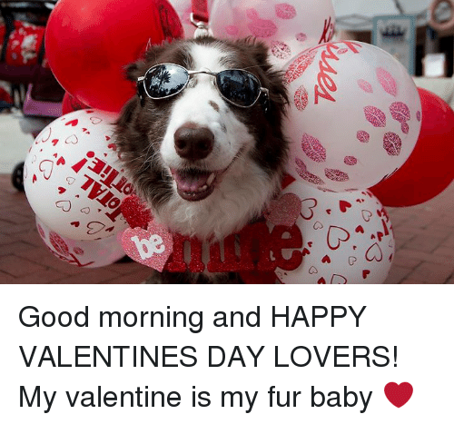 Good-Morning-and-Happy-Valentines-Day-Lovers