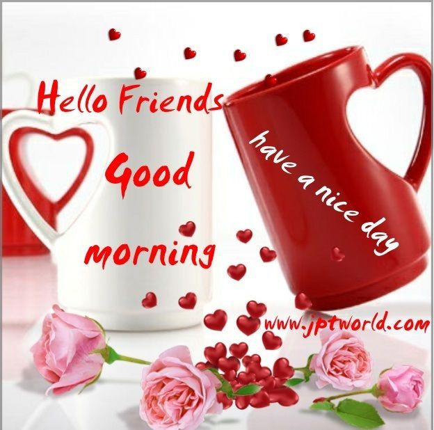 Hello Friend Good Morning Have a nice day