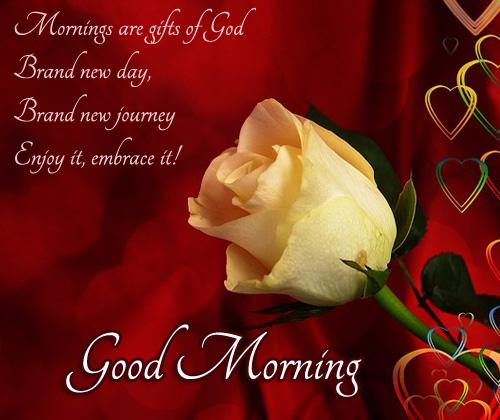 Good Morning Love Quotes on Valentine's Day