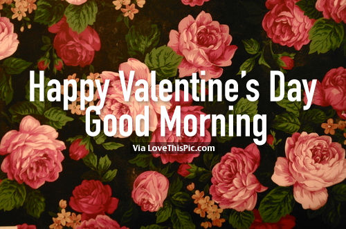 Happy Valentine's Day Good Morning Flower Picture Image