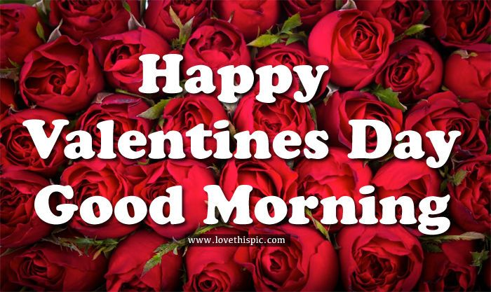 Happy Valentines Day Good Morning Image-5