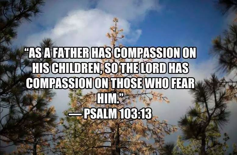 Religious Fathers Day Bible Quotes Photos