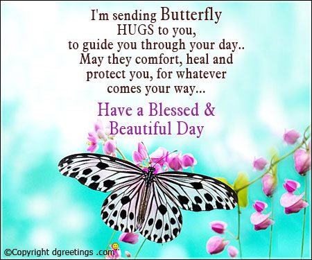 Butterfly Have a Blessed and Beautiful Day Images with Quotes
