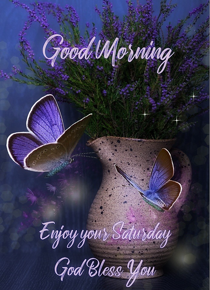 Good Morning Enjoy your Saturday Butterfly God Bless You Images Picture
