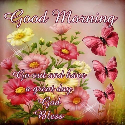 Good Morning Go out Have a Great Day God Bless Flowers Images