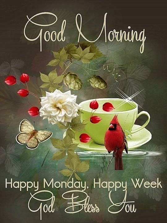 Good Morning Happy Monday Week God Bless You Bird Coffee Cup Image Pics