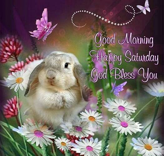 Good Morning Happy Saturday God Bless You Pic