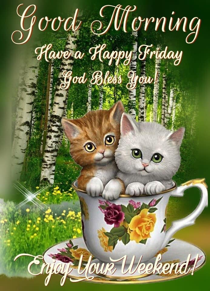 Good Morning Have a Happy Friday God Bless You Enjoy Weekend Images