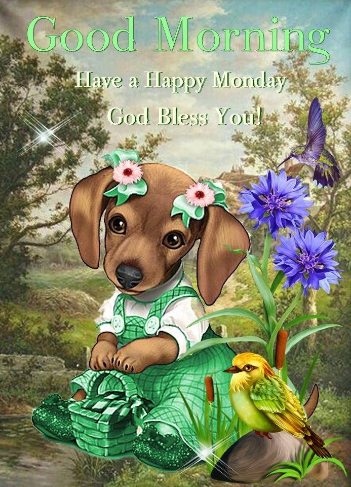 Good Morning Have a Happy Monday God Bless Dog Bird Images