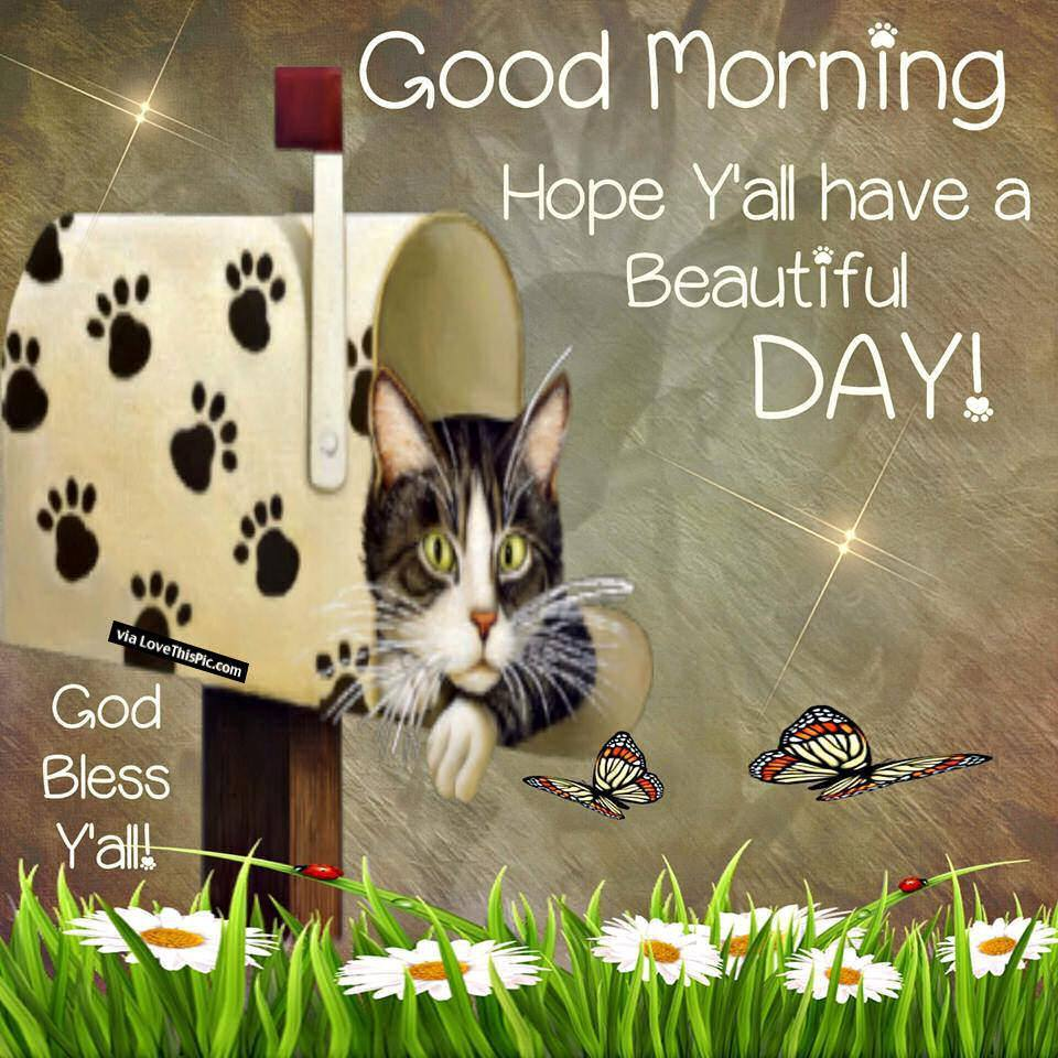 Good Morning Hope Y'all a Beautiful Day God Bless All