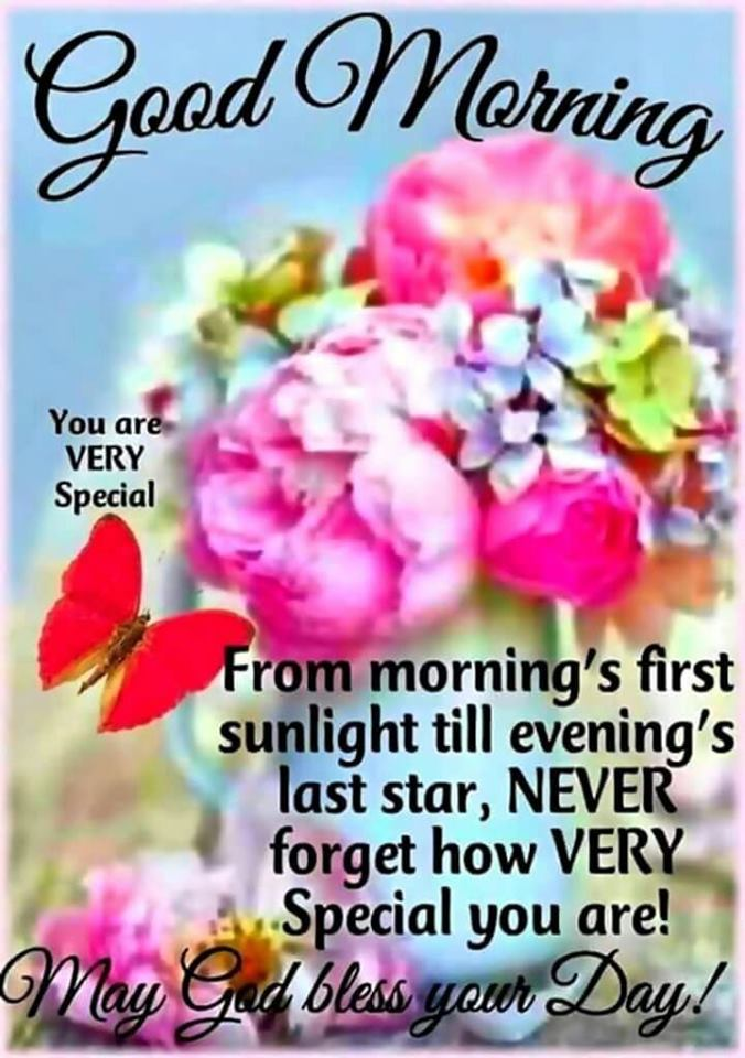 Good Morning May God Bless Your Day Quotes Images