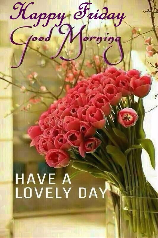 Happy Friday Good Morning Have a Lovely Day Images
