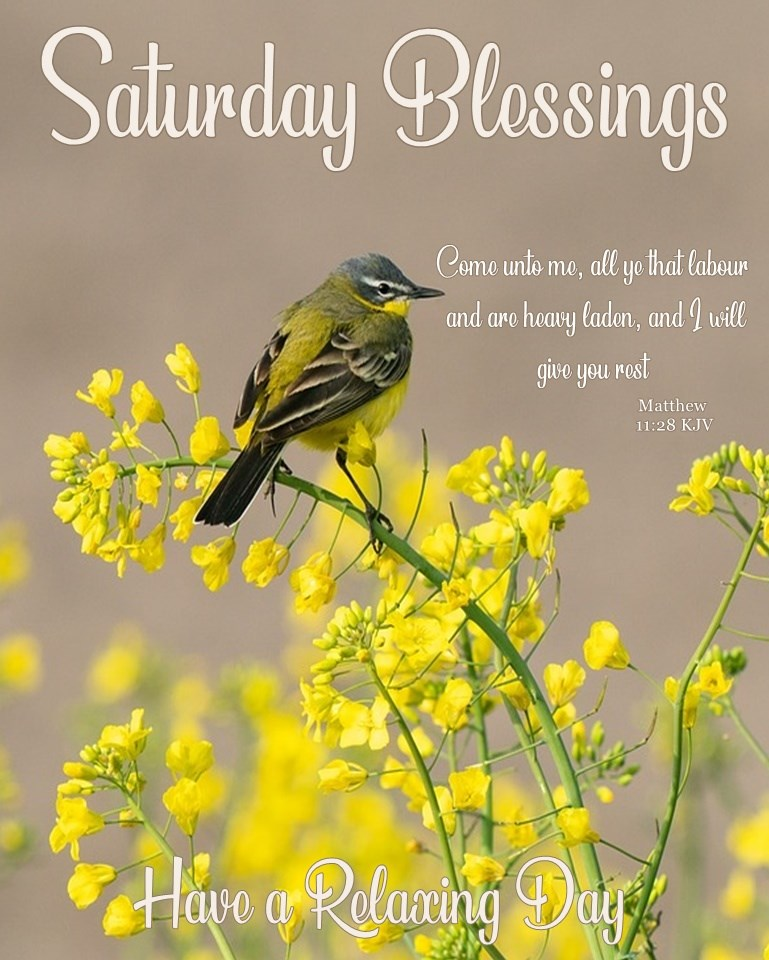 Saturday Blessings Have a Relaxing Day Quotes Sayings Greetings Picture