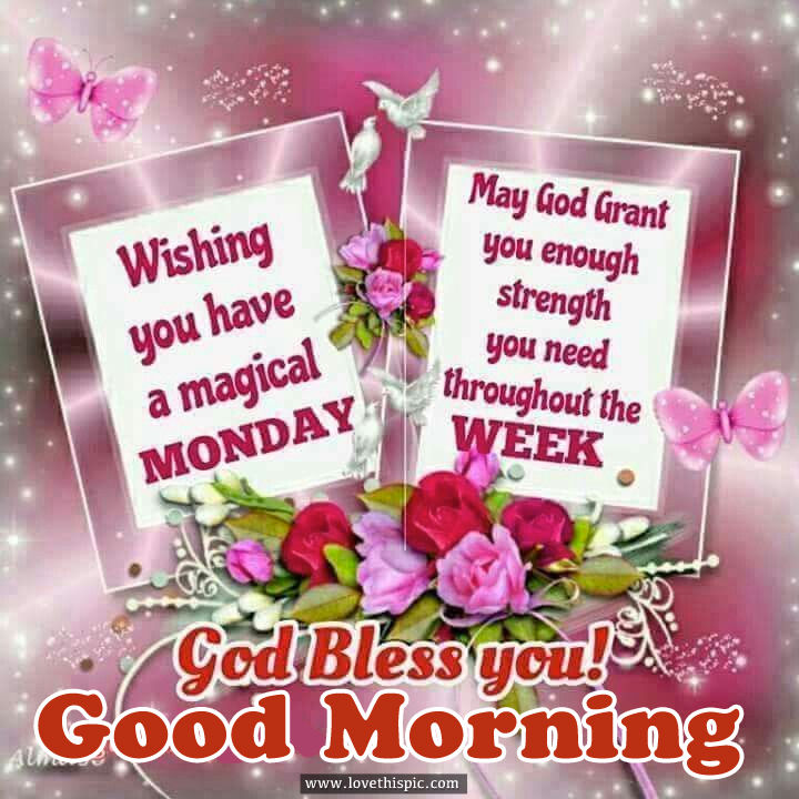 Wishing you have a magical Monday Week Good Morning God Bless You Flowers